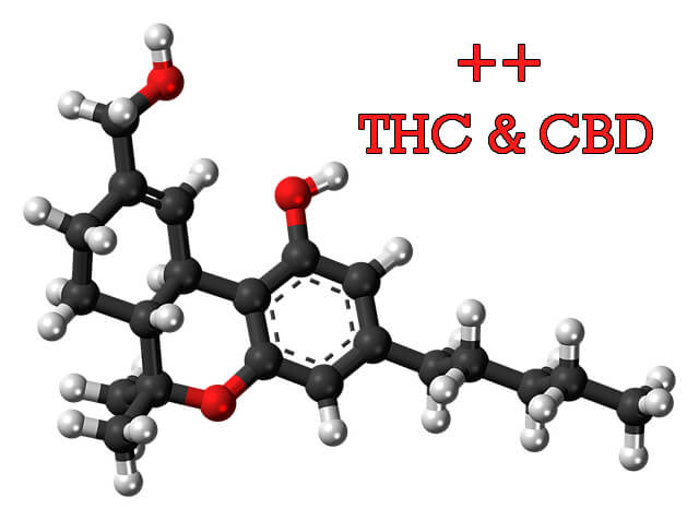 More THC & CBD with every hit